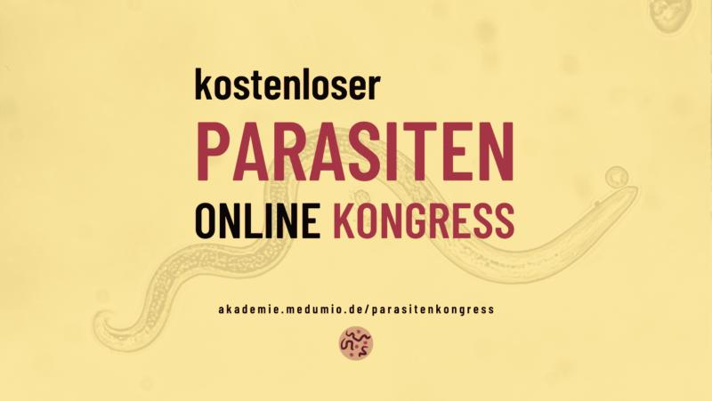 akademie.medumio.de